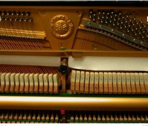 klavier seriennummer